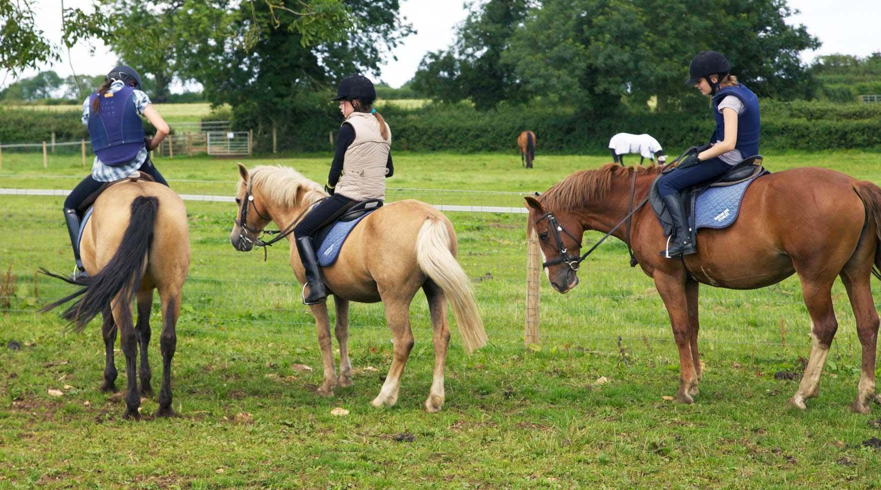 029. Horse Riding